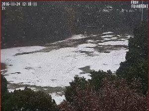 行田公園積雪状況